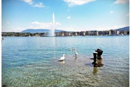 Co zwiedzić w Genewie?
